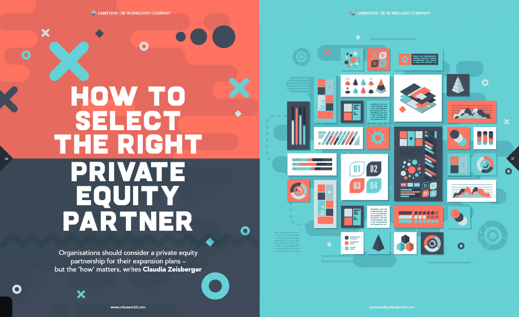 Private Equity Partner